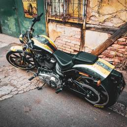 Branding promo-motocyklu Harley Davidson pro Dunlop